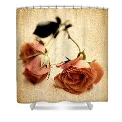 Vintage Rose Shower Curtain by Jessica Jenney