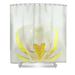 White Orchid-3 Shower Curtain