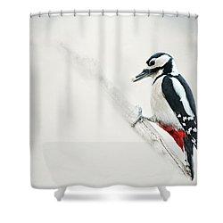 Woodpecker Shower Curtain by Heike Hultsch