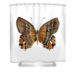 60 Euselasia Butterfly Shower Curtain