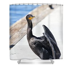 624 Det 7 Come With Me Shower Curtain by Chris Berry
