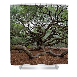 Mighty Branches Shower Curtain