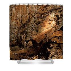 Baradla Shower Curtain by Daniel Csoka