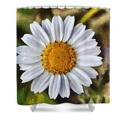 Daisy Shower Curtain by George Atsametakis