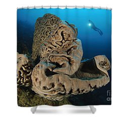 The Salvador Dali Sponge With Intricate Shower Curtain by Steve Jones