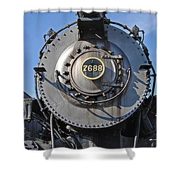 7688 Shower Curtain by Skip Willits