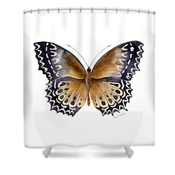 77 Cethosia Butterfly Shower Curtain by Amy Kirkpatrick