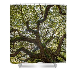 Island Angel Oak Tree Shower Curtain