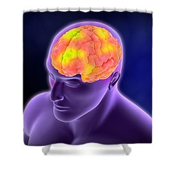 Conceptual Image Of Human Brain Shower Curtain by Stocktrek Images