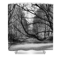 9 Black And White Artistic Painterly Icy Entrance Blocked By Braches Shower Curtain