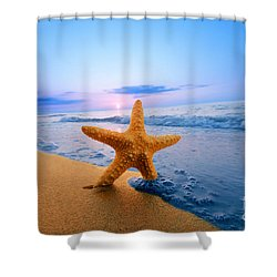 Starfish Shower Curtain by Michal Bednarek