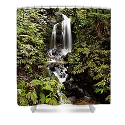 Waterfall Shower Curtain by Les Cunliffe