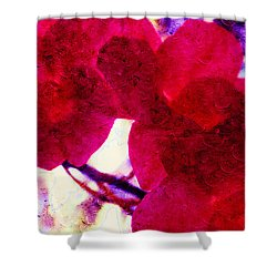 The Red Orchids  Shower Curtain