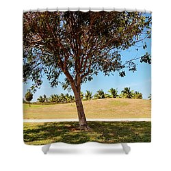 Shower Curtain featuring the photograph 96 Degrees In Da Shade by Amar Sheow