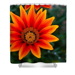 A Beautiful Beginning Shower Curtain by Syed Aqueel