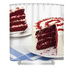 A Big Red Cake Shower Curtain by Anne Gilbert