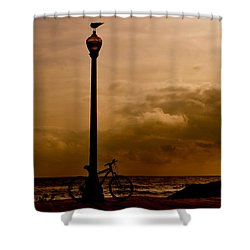 A Bird And A Bike Shower Curtain