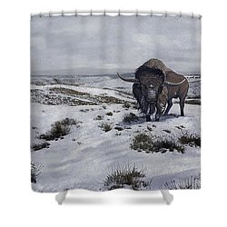 A Bison Latifrons In A Winter Landscape Shower Curtain by Roman Garcia Mora