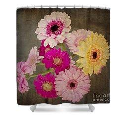 A Bouquet Of Gerbera Daisies Shower Curtain