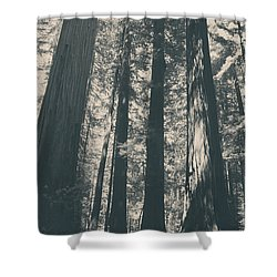 A Breath Of Fresh Air Shower Curtain
