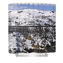 Shower Curtain featuring the photograph A Bridge In Alaska by Brian Williamson