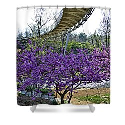 Shower Curtain featuring the photograph A Bridge To Spring by Larry Bishop