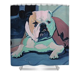 A Bulldog In Love Shower Curtain