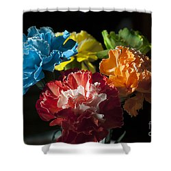 A Bunch Of Beauty Shower Curtain