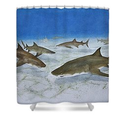 A Bushel Of Lemon Sharks Shower Curtain by Jeff Lucas