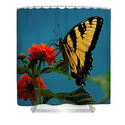Shower Curtain featuring the photograph A Butterfly by Raymond Salani III