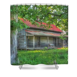 A Cabin In The Woods Shower Curtain by Dan Stone