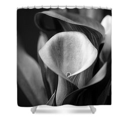A Caress For Daraa Shower Curtain by Floyd Menezes