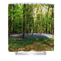 Shower Curtain featuring the photograph A Carpet Of Colour by Wendy Wilton