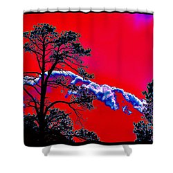Shower Curtain featuring the photograph A Certain Cosmic Ecology by Susanne Still
