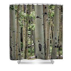 A Change Of Weather  Shower Curtain by Saija  Lehtonen