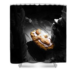 A Child Is Born Shower Curtain by Nicki Bennett