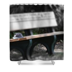 Shower Curtain featuring the photograph A Child Somewhere In My Dreams by DigiArt Diaries by Vicky B Fuller