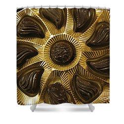 A Chocolate Sun Shower Curtain by Ausra Huntington nee Paulauskaite