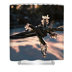 A Cold Welcome Shower Curtain