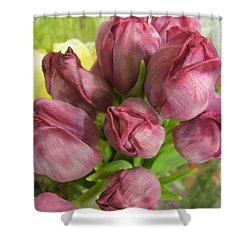 A Cool Bouquet  Shower Curtain