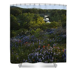 A Creek In Llano County  Shower Curtain by Susan Rovira