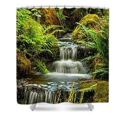 A Creek Runs Through Shower Curtain
