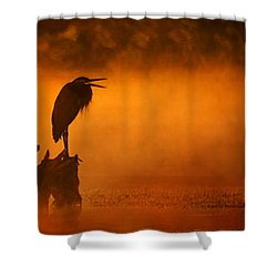 A Cry In The Mist Shower Curtain