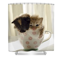A Cup Of Cuteness Shower Curtain