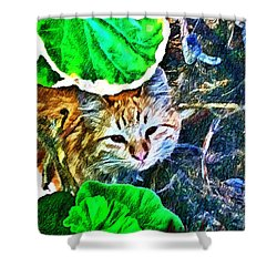 A Curious Cat Shower Curtain