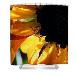 Shower Curtain featuring the photograph A Dark Sun by Brian Boyle