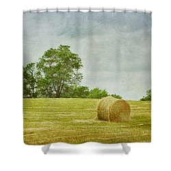 A Day At The Farm Shower Curtain by Kim Hojnacki