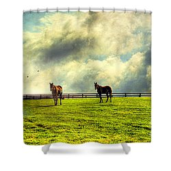A Day In Kentucky Shower Curtain
