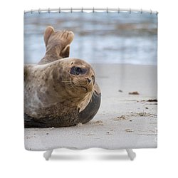 Shower Curtain featuring the photograph a day in the Sun by Ruth Jolly