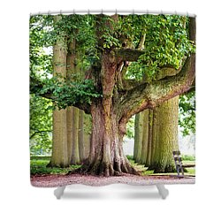 A Day Without You. Park Of The De Haar Castle Shower Curtain by Jenny Rainbow